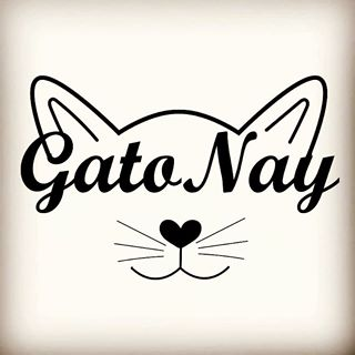 Logo de GatoNay