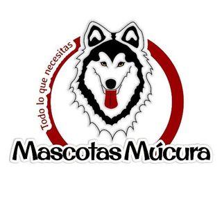 Logo de Mascotas | Accesorios