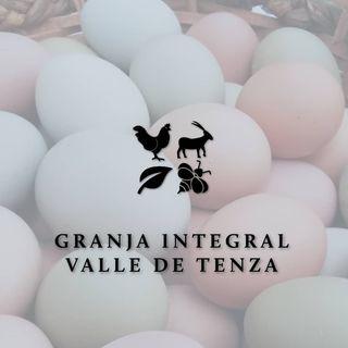 Logo de granja integral valle de tenza