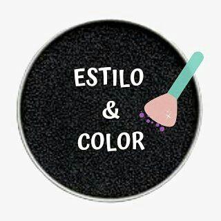 Logo de Estilo & Color😉