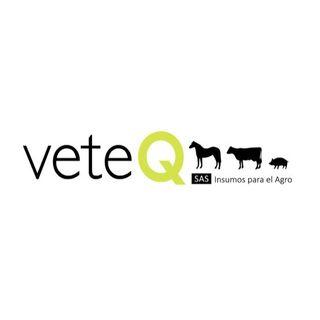 Logo de VETEQ S.A.S.