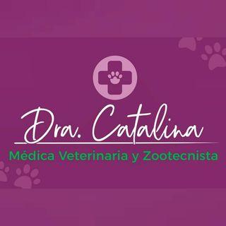 Logo de Dra. Catalina Veterinaria
