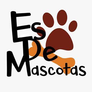 Logo de HUMOR, MASCOTAS Y MUCHO MÁS