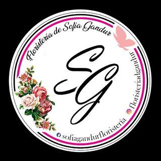 Logo de Floristería D'Sofía Gandur