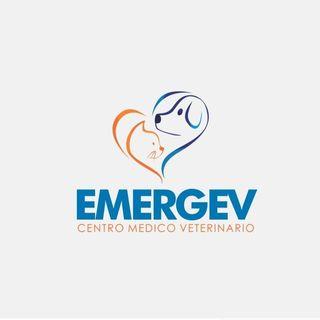 Logo de Manuel Acuña | Veterinario