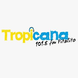 Logo de Tropicana Pitalito Oficial