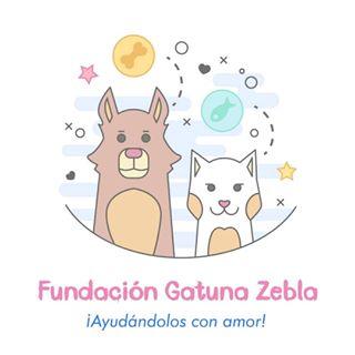 Logo de Fundación Zebla