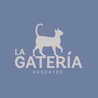 Logo de La Gatería Rescates