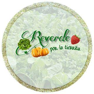 Logo de Reverde por la tierrita Tunja