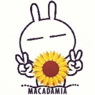Logo de Macadamia