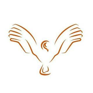 Logo de Kondoro