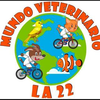 Logo de Mundo Veterinario La 22