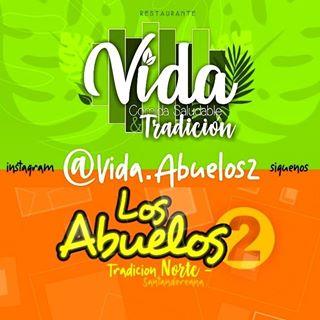 Logo de VIDA TRADICION&Salud