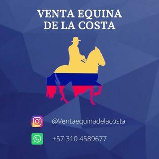 Logo de Ventas Equinas De La Costa