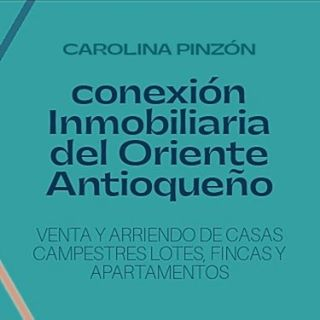 Logo de Conexion Inmobiliaria