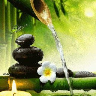 Logo de Equilibrio Natural Spa