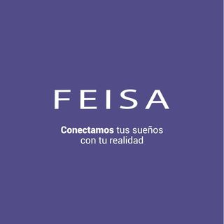 Logo de FEISA