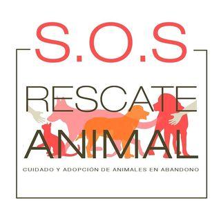 Logo de SOSRESCATEANIMAL