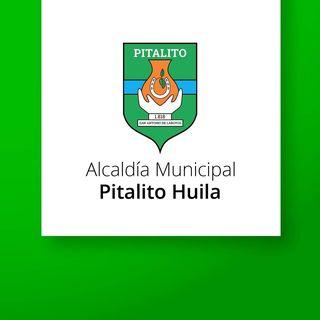 Logo de Alcaldía de Pitalito