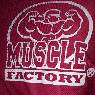 Logo de @musclefactoryoriginal