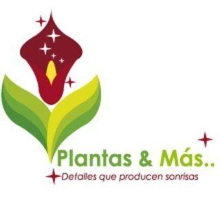 Logo de Plantas & Más