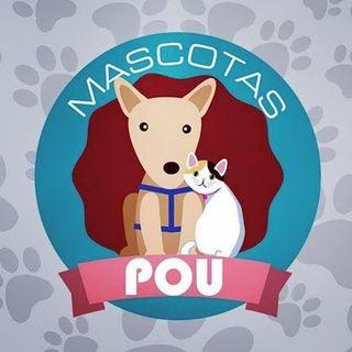 Logo de ACCESORIOS PARA TU MASCOTA