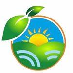 Logo de FRUTO AL DÍA