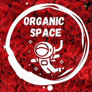 Logo de Organic Space