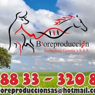 Logo de Bioreproduccion SAS
