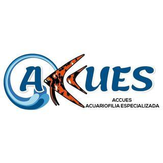 Logo de Accues Peces Ibagué