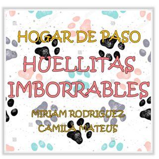 Logo de HUELLITAS IMBORRABLES 🐾