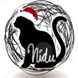 Logo de Nidus cats