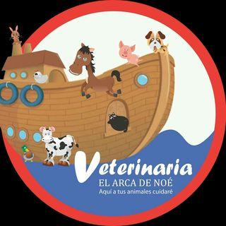 Logo de Veterinaria Arca De Noé