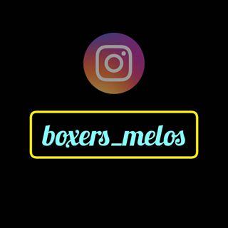 Logo de boxers_melos
