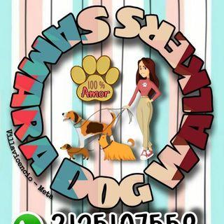 Logo de 🐶 SámaraDogWalkers&PetSitters