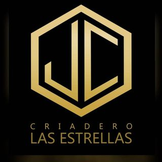 Logo de Juan Jaramillo Trujillo