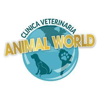 Logo de veterinaria animal WORLD