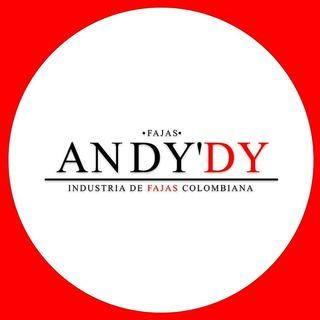 Logo de Fajas Andydy Distribuidor