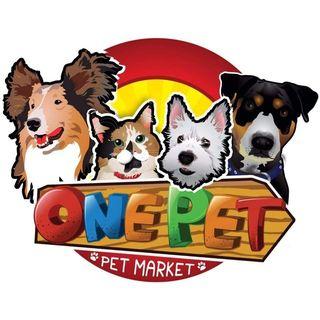 Logo de Accesorios para mascotas