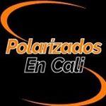 Logo de Polarizados En Cali