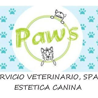 Logo de Paws Vet
