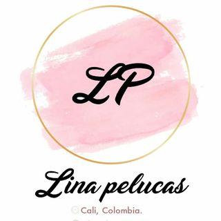Logo de LM Pelucas