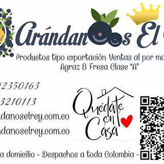 Logo de Arandanos El Rey
