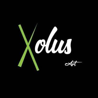 Logo de Xolus Art
