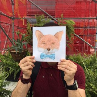 Logo de Libros Mr. Fox