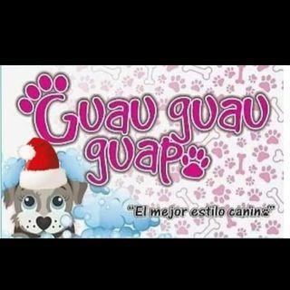 Logo de 🐾GUAU GUAU GUAPO🐾🐶🐩- IPIALES