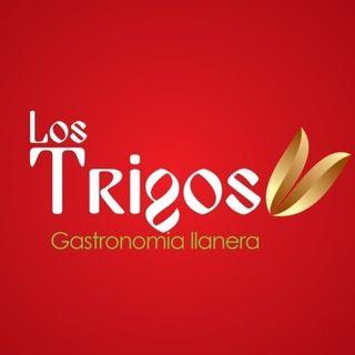 Logo de LOS TRIGOS GASTRONOMÍA LLANERA