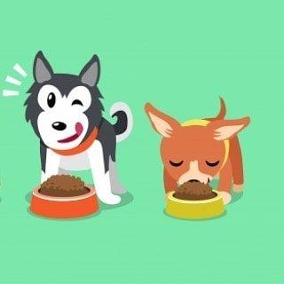 Logo de Máx Pet Shop🐾