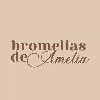 Logo de Bromelias de Amelia