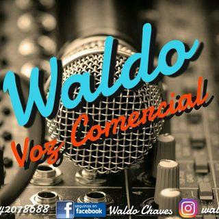 Logo de Waldo Voz
